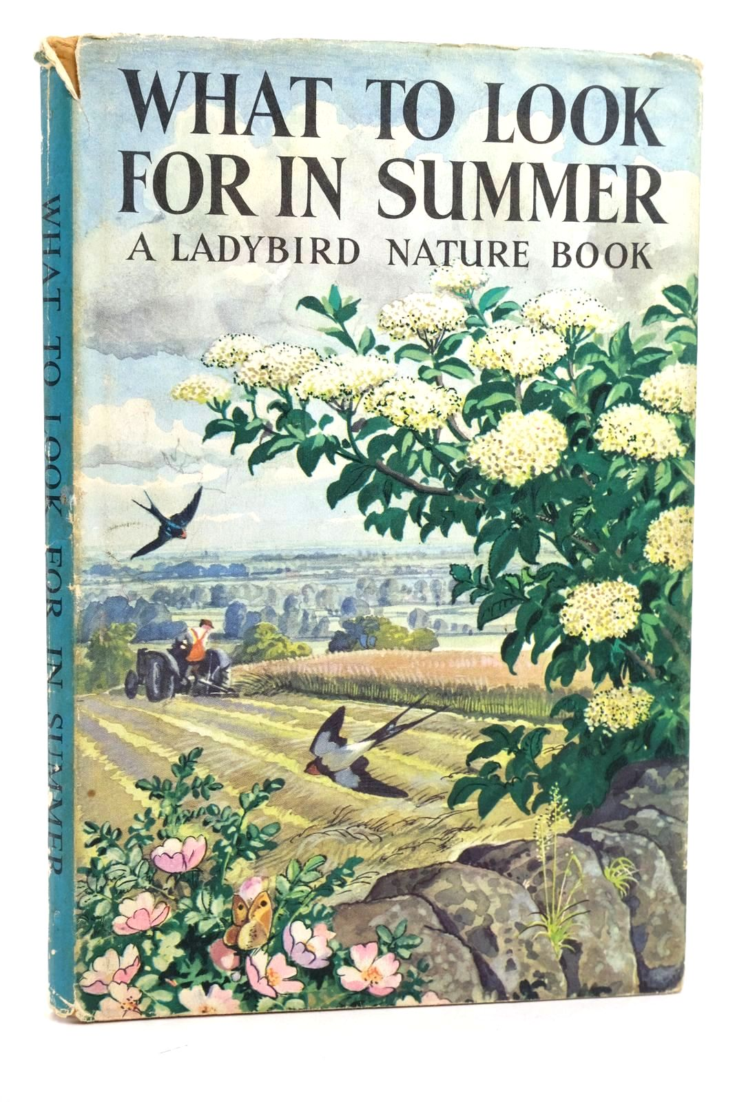 Photo of WHAT TO LOOK FOR IN SUMMER- Stock Number: 1318834