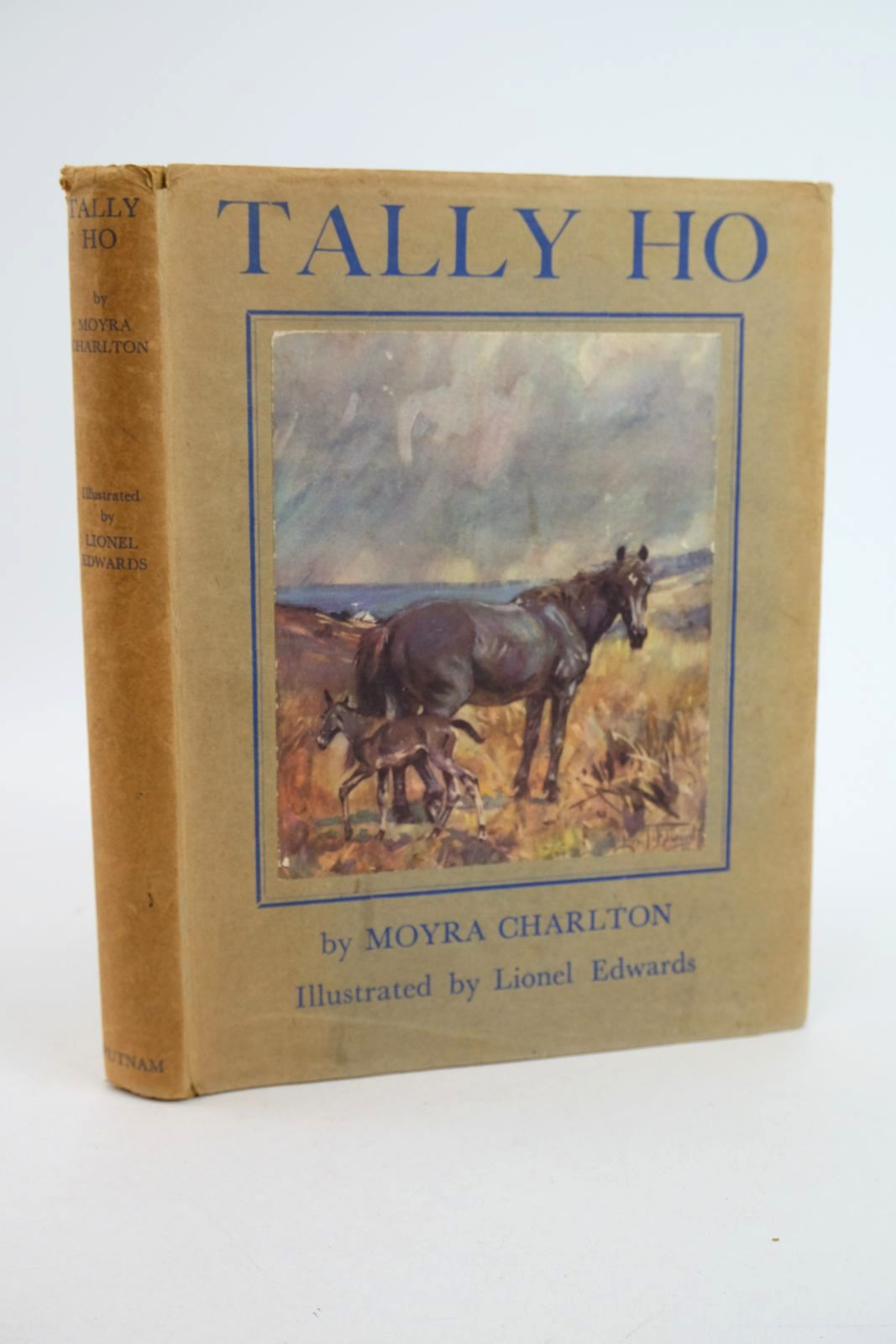Photo of TALLY HO- Stock Number: 1318891