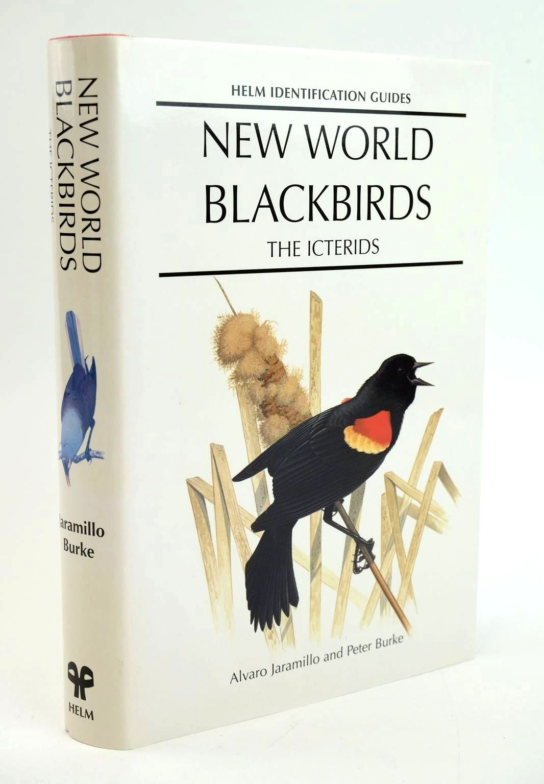 Photo of NEW WORLD BLACKBIRDS: THE ICTERIDS (HELM IDENTIFICATION GUIDES)- Stock Number: 1319293