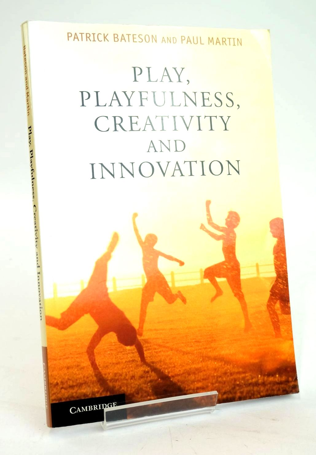 Photo of PLAY, PLAYFULNESS, CREATIVITY AND INNOVATION- Stock Number: 1319663