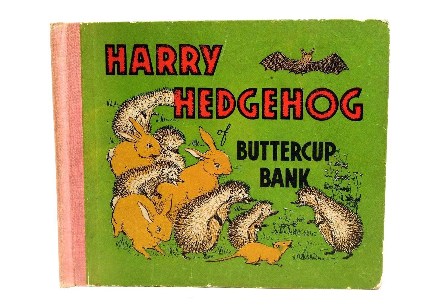 Photo of HARRY HEDGEHOG OF BUTTERCUP BANK- Stock Number: 1320442