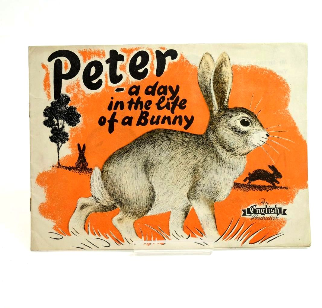 Photo of PETER - A DAY IN THE LIFE OF A BUNNY published by English & Partners Ltd. (STOCK CODE: 1321699)  for sale by Stella & Rose's Books
