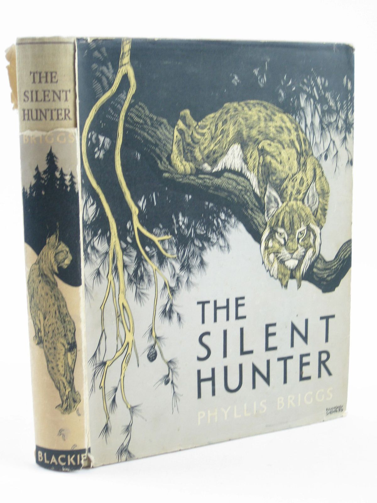 Photo of THE SILENT HUNTER- Stock Number: 1401934