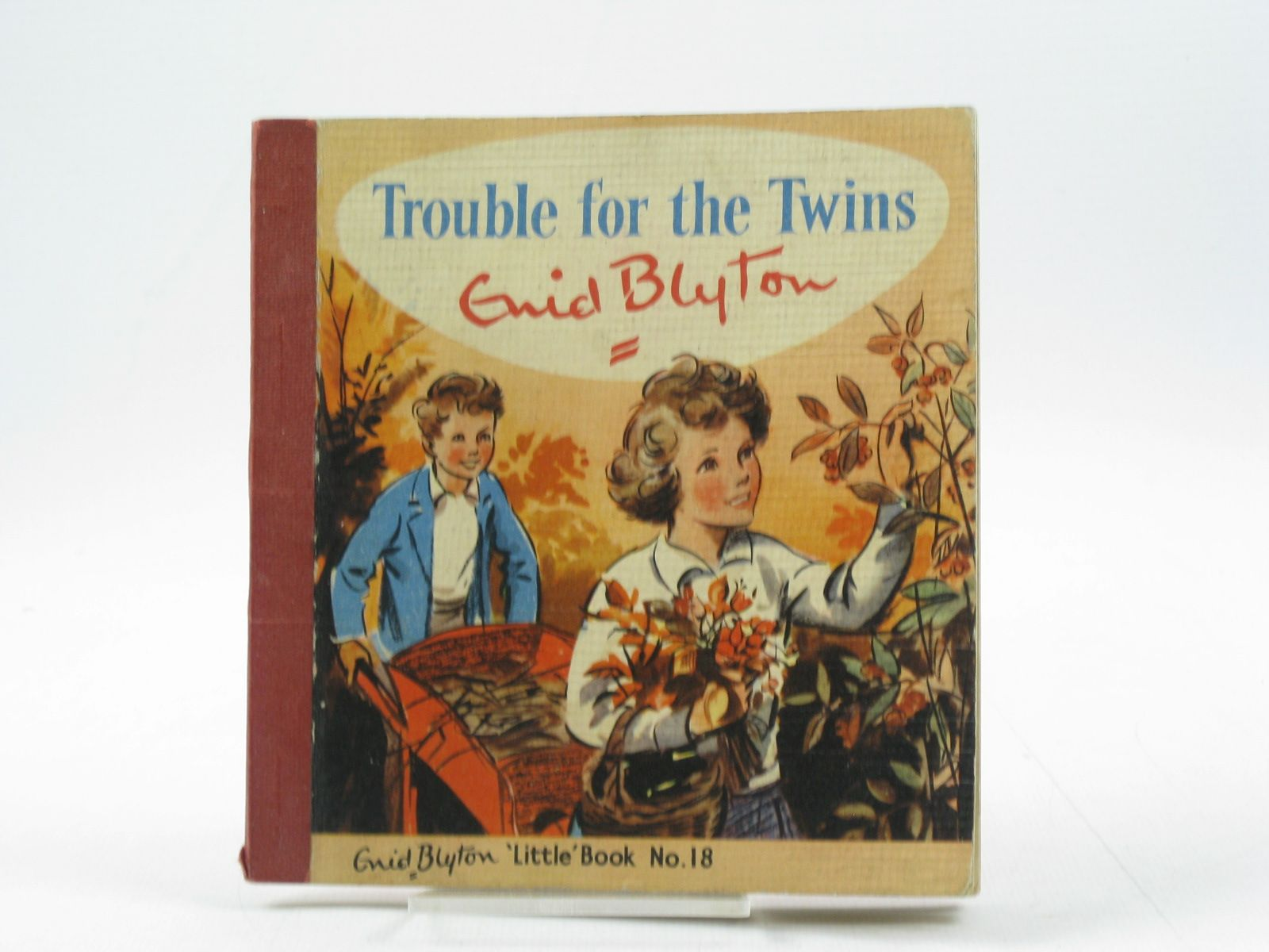 Photo of TROUBLE FOR THE TWINS written by Blyton, Enid illustrated by Soper, Eileen published by The Brockhampton Press Ltd. (STOCK CODE: 1403078)  for sale by Stella & Rose's Books