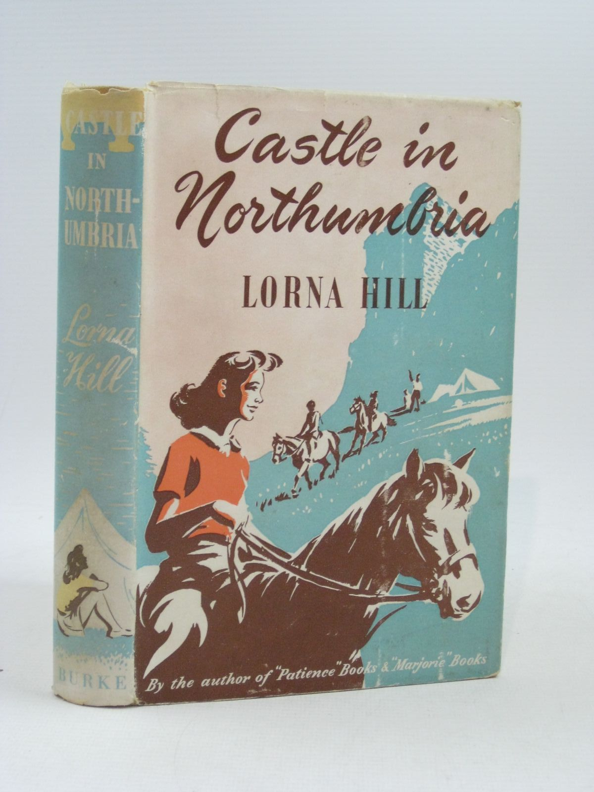 Photo of CASTLE IN NORTHUMBRIA written by Hill, Lorna illustrated by Dunlop, Gilbert published by Burke Publishing Company Ltd. (STOCK CODE: 1404280)  for sale by Stella & Rose's Books