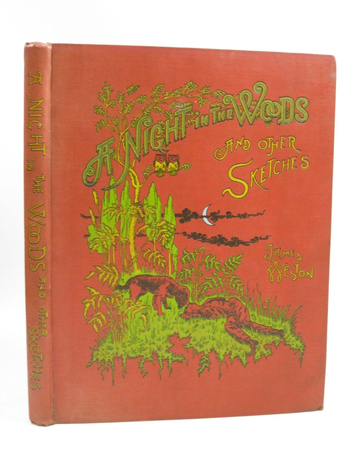 Photo of A NIGHT IN THE WOODS AND OTHER TALES AND SKETCHES- Stock Number: 1404835