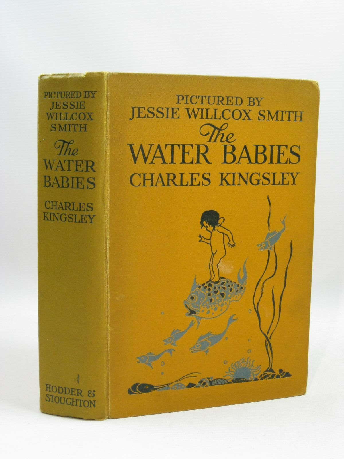 Photo of THE WATER BABIES written by Kingsley, Charles illustrated by Smith, Jessie Willcox published by Hodder & Stoughton (STOCK CODE: 1405010)  for sale by Stella & Rose's Books