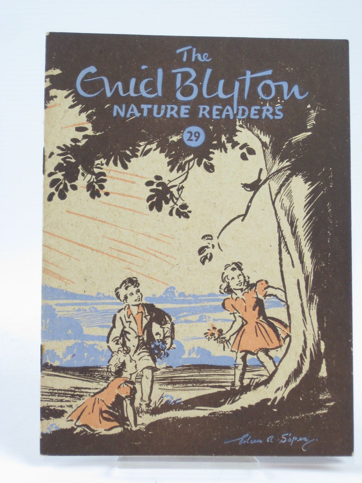 Photo of THE ENID BLYTON NATURE READERS No. 29 written by Blyton, Enid illustrated by Soper, Eileen published by Macmillan & Co. Ltd. (STOCK CODE: 1406274)  for sale by Stella & Rose's Books