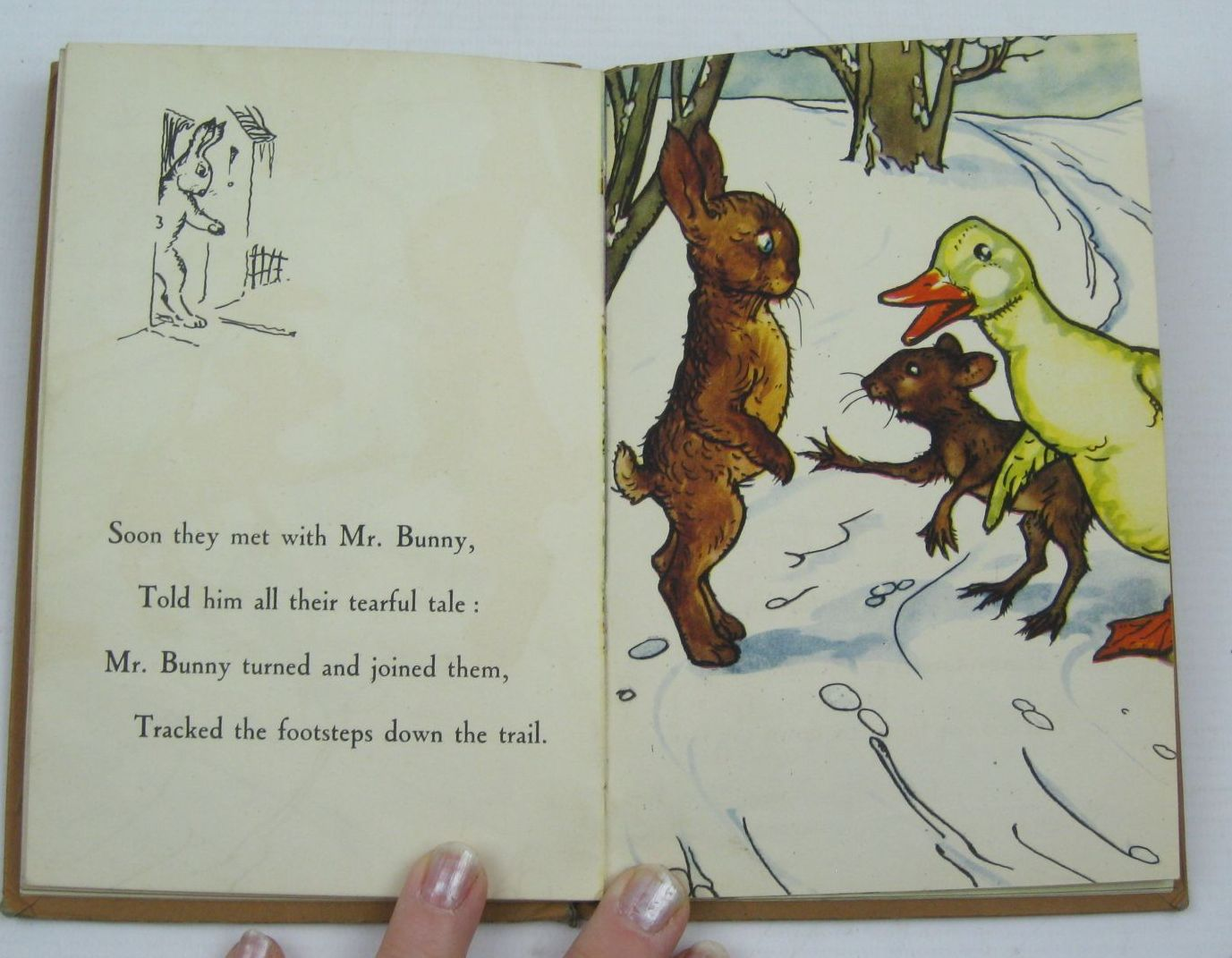Photo of DOWNY DUCKLING written by Macgregor, A.J.