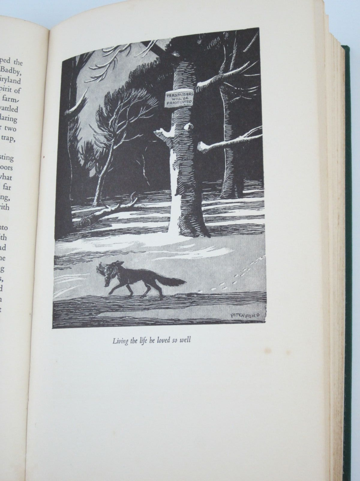 Photo of WILD LONE written by BB,  illustrated by BB,  published by Eyre & Spottiswoode (STOCK CODE: 1501279)  for sale by Stella & Rose's Books