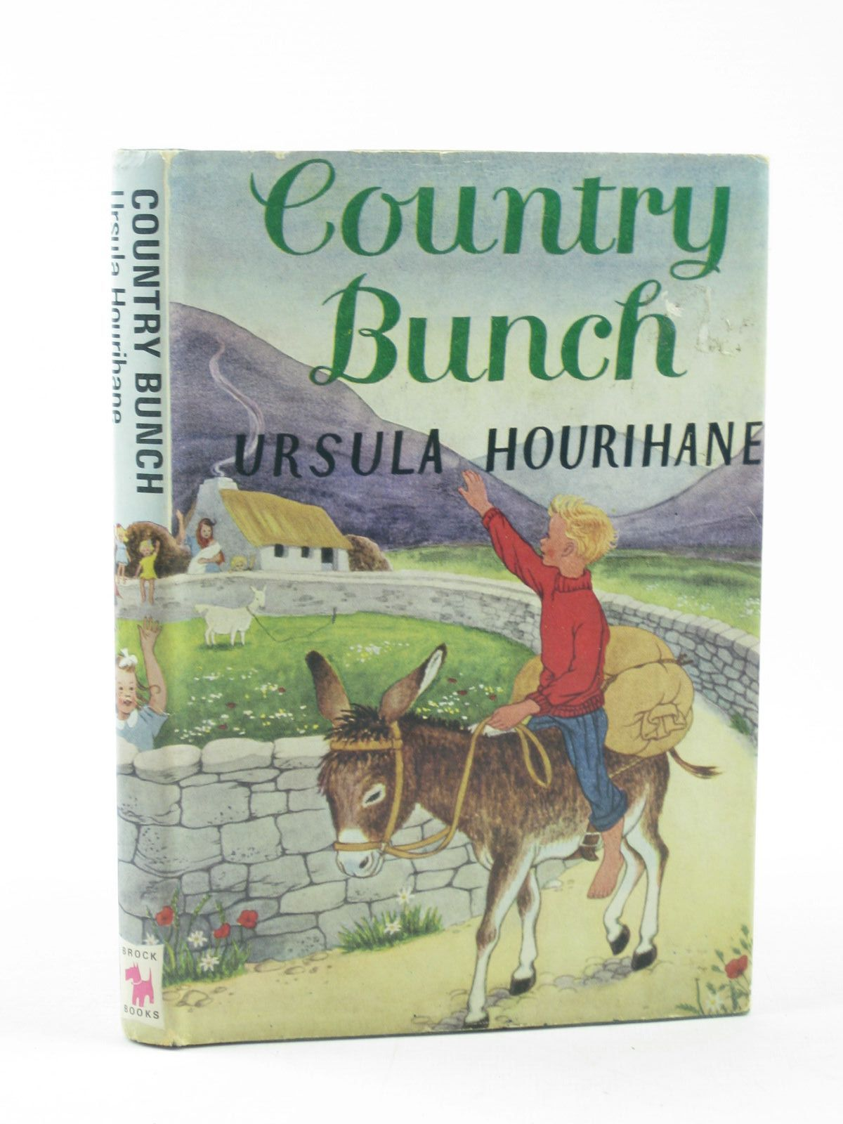Photo of COUNTRY BUNCH written by Hourihane, Ursula illustrated by Hummerstone, Rene published by Hodder & Stoughton (STOCK CODE: 1502103)  for sale by Stella & Rose's Books