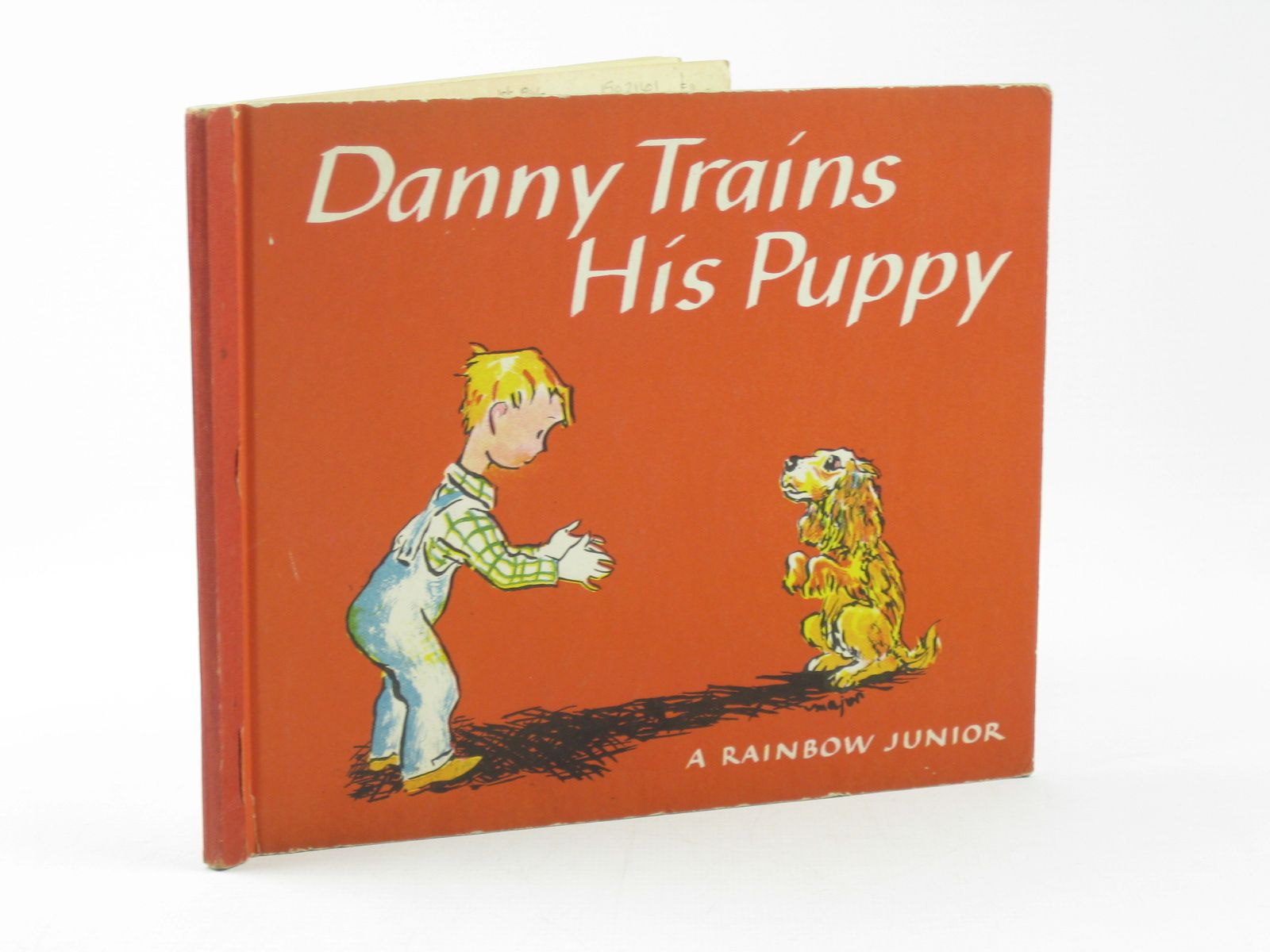 Photo of DANNY TRAINS HIS PUPPY- Stock Number: 1502161