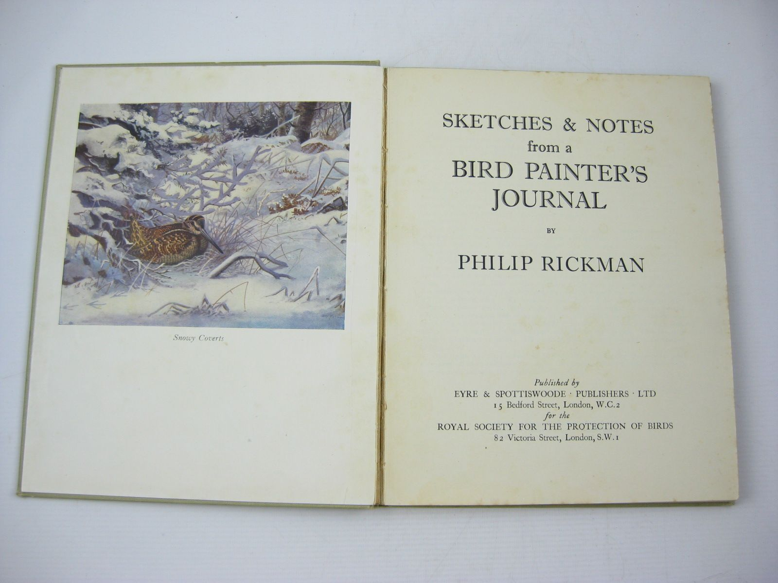 Photo of SKETCHES & NOTES FROM A BIRD PAINTER'S JOURNAL written by Rickman, Philip published by Eyre & Spottiswoode Limited (STOCK CODE: 1502802)  for sale by Stella & Rose's Books
