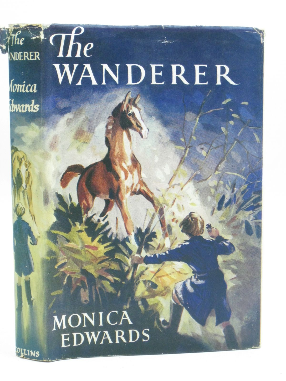 Photo of THE WANDERER written by Edwards, Monica illustrated by Wanklyn, Joan published by Collins (STOCK CODE: 1506396)  for sale by Stella & Rose's Books