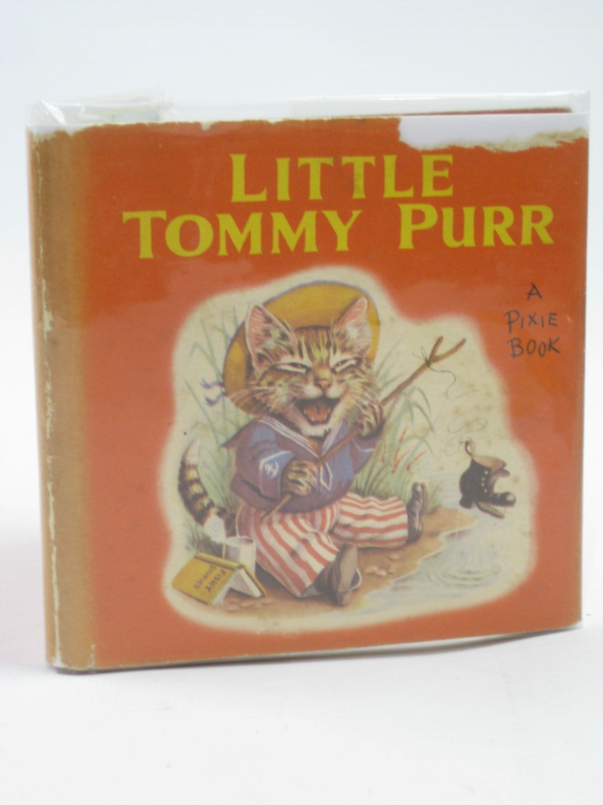 Photo of LITTLE TOMMY PURR- Stock Number: 1507096