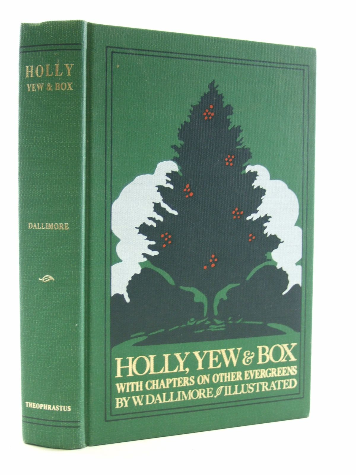 Photo of HOLLY, YEW & BOX- Stock Number: 1603931