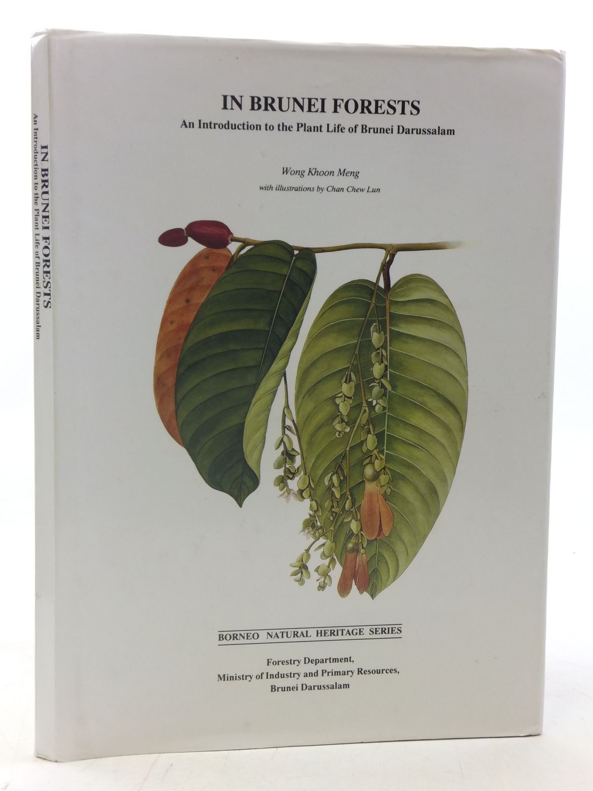 Photo of IN BRUNEI FORESTS written by Meng, Wong Khoon illustrated by Lun, Chan Chew published by Ministry Of Industry And Primary Resources Brunei (STOCK CODE: 1605952)  for sale by Stella & Rose's Books