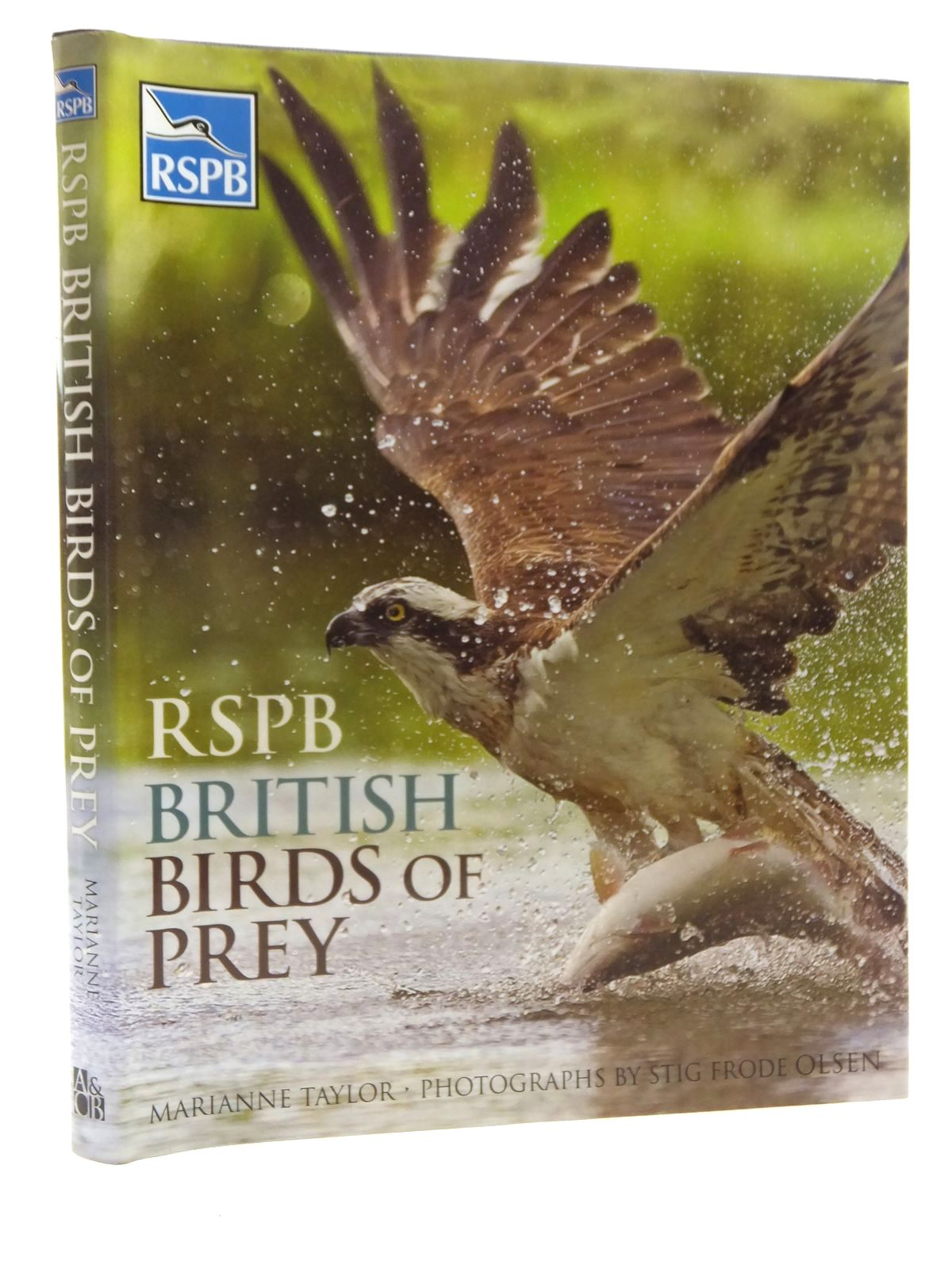 Photo of RSPB BRITISH BIRDS OF PREY- Stock Number: 1610064