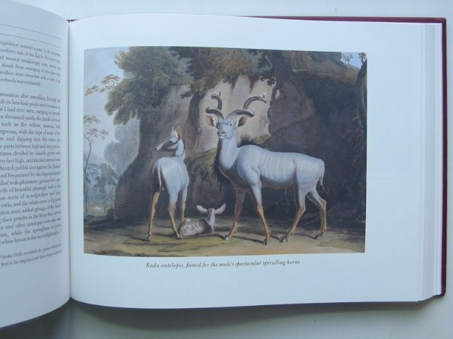 Photo of AN ILLUSTRATED JOURNEY ROUND THE WORLD written by Daniell, Thomas Daniell, Samuel Daniell, William Prior, Katherine illustrated by Daniell, Samuel Daniell, Thomas Daniell, William published by Folio Society (STOCK CODE: 1701346)  for sale by Stella & Rose's Books