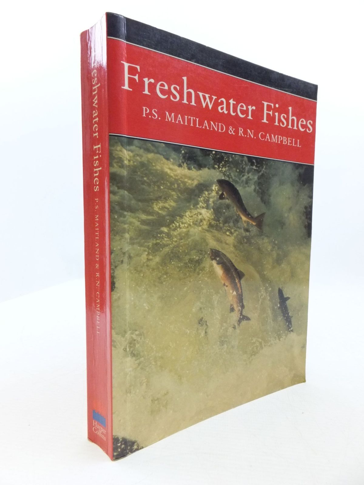 Photo of FRESHWATER FISHES OF THE BRITISH ISLES (NN 75) written by Maitland, Peter S.<br />Campbell, R. Niall published by Harper Collins (STOCK CODE: 1708162)  for sale by Stella & Rose's Books