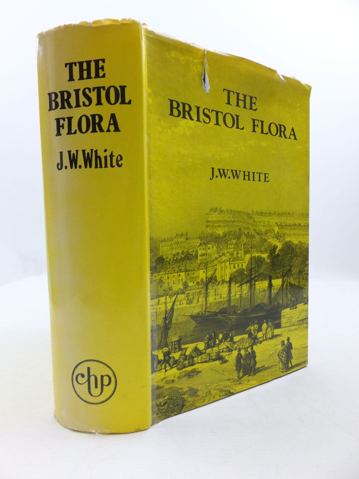 Photo of THE FLORA OF BRISTOL- Stock Number: 1708168