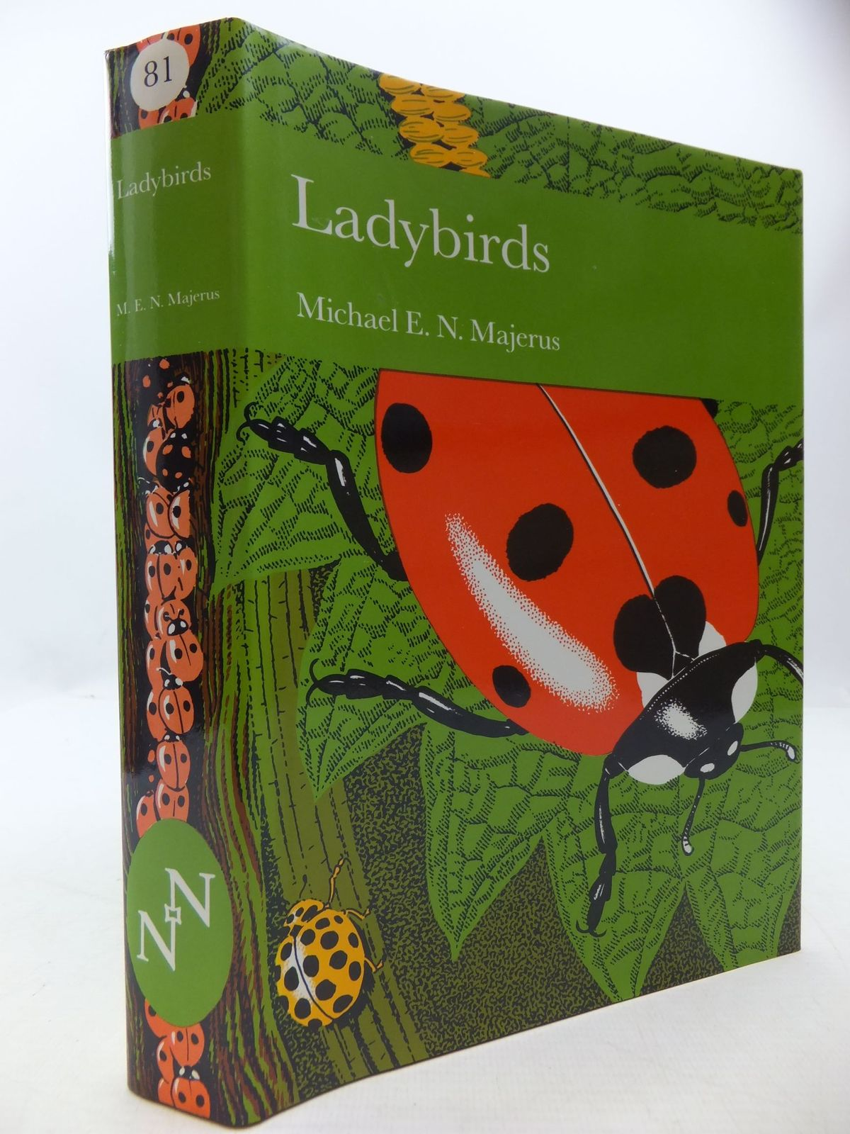 Photo of LADYBIRDS (NN 81)- Stock Number: 1709260