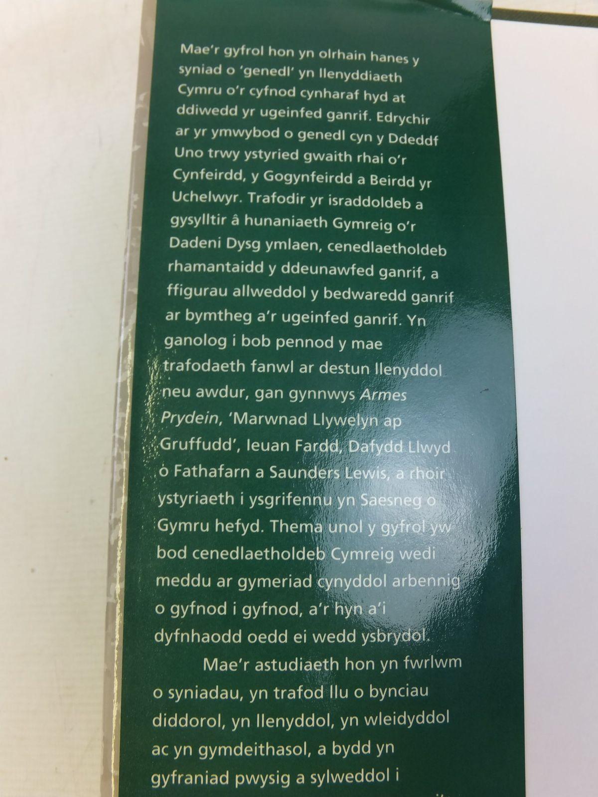 Photo of YSBRYD Y CWLWM: DELWEDD Y GENEDL YN EIN LLENYDDIAETH written by Jones, R.M. published by Gwasg Prifysgol Cymru (STOCK CODE: 1712817)  for sale by Stella & Rose's Books