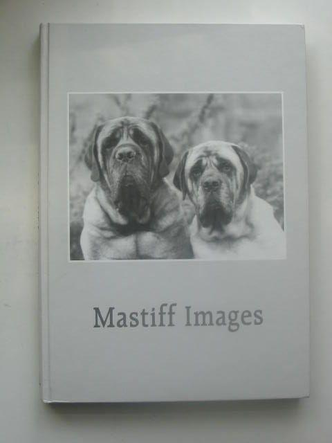 Photo of MASTIFF IMAGES- Stock Number: 1801978