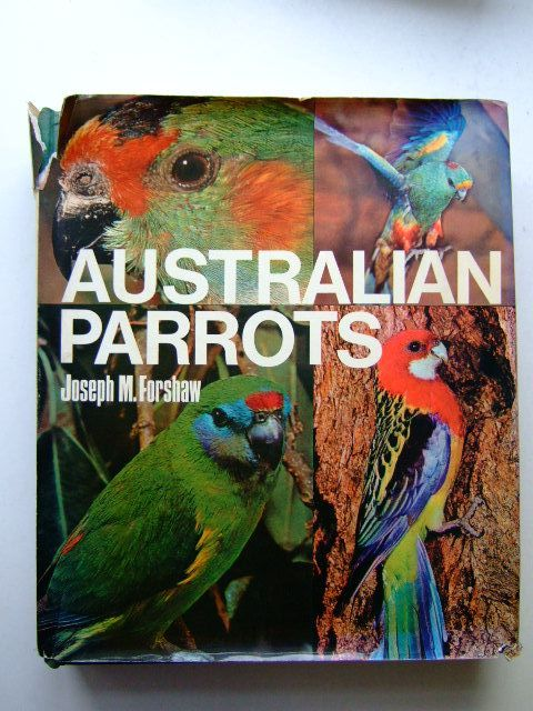 Photo of AUSTRALIAN PARROTS- Stock Number: 1803459