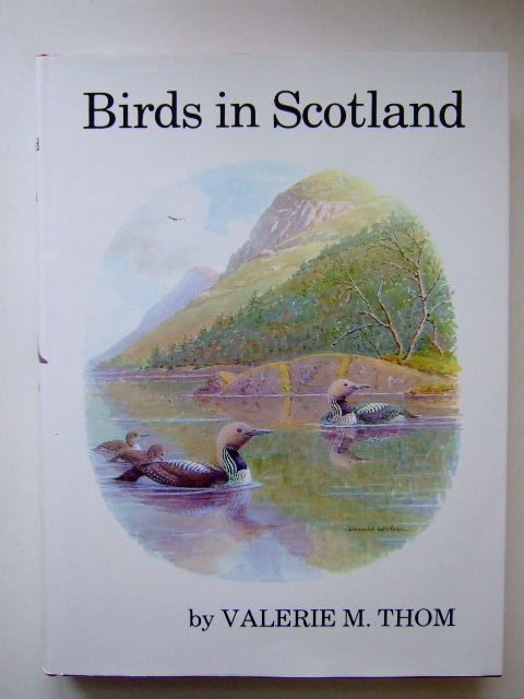 Photo of BIRDS IN SCOTLAND written by Thom, Valerie M. published by T. & A.D. Poyser (STOCK CODE: 1803467)  for sale by Stella & Rose's Books