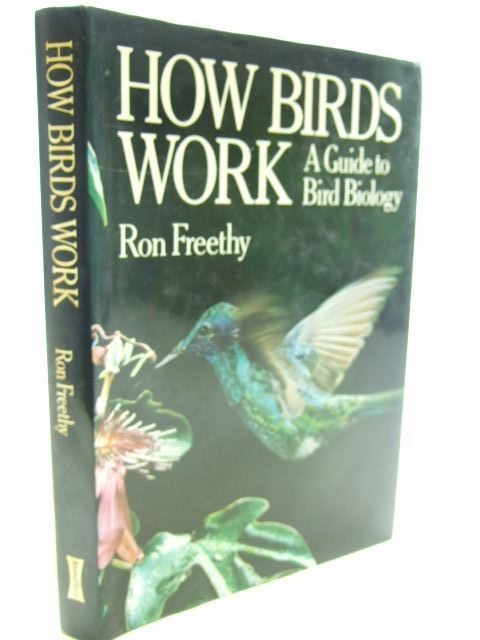 Photo of HOW BIRDS WORK- Stock Number: 1804618