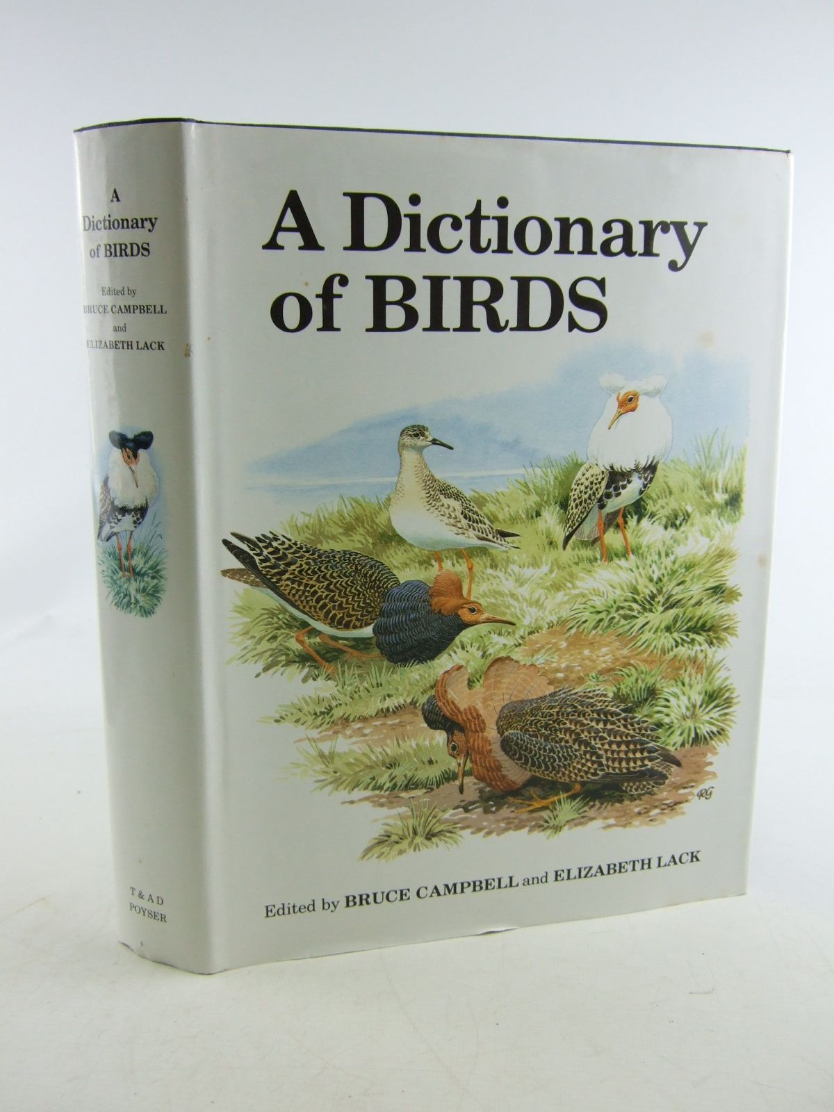 Photo of A DICTIONARY OF BIRDS written by Campbell, Bruce