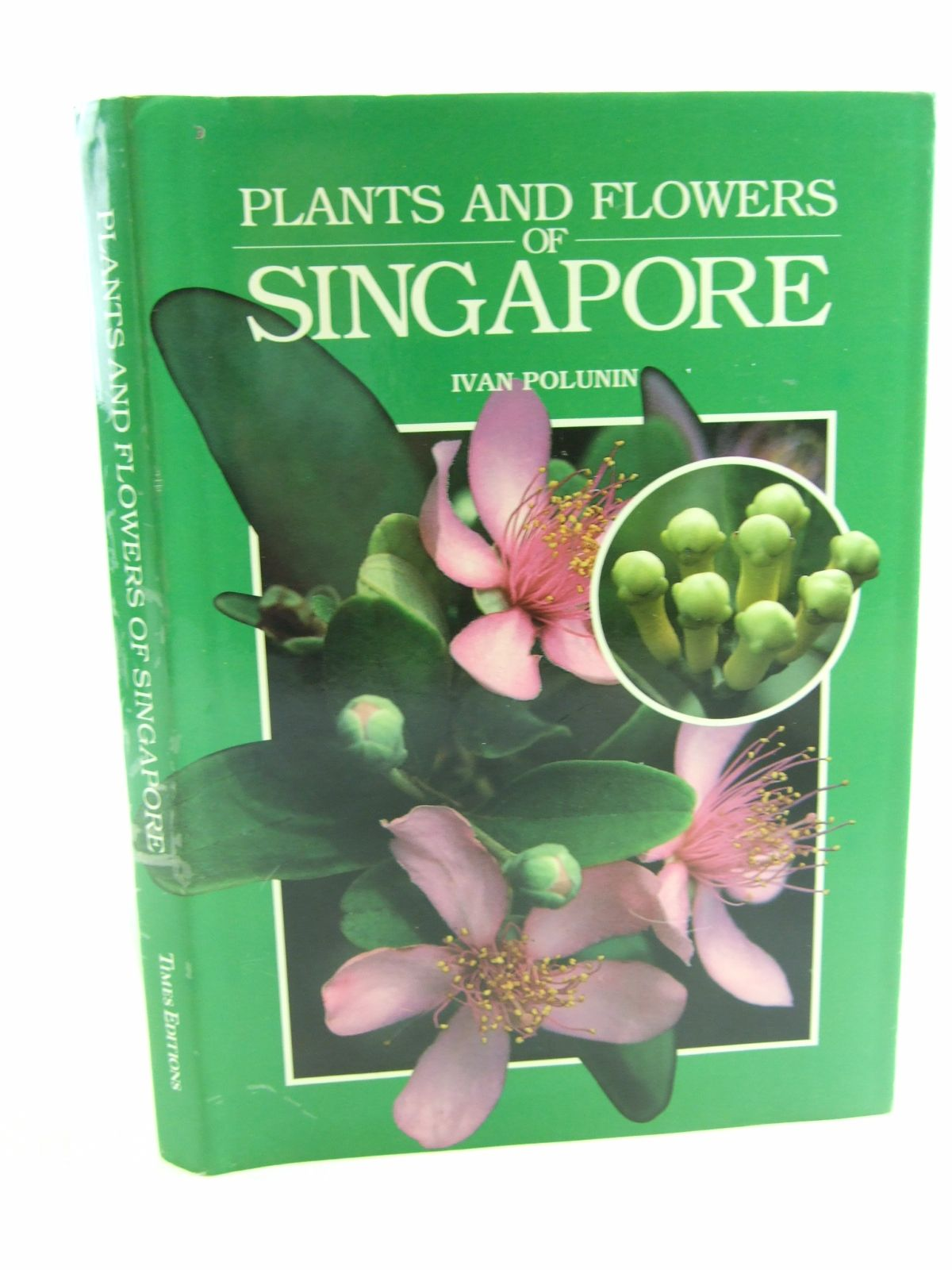 Photo of PLANTS AND FLOWERS OF SINGAPORE- Stock Number: 1807029