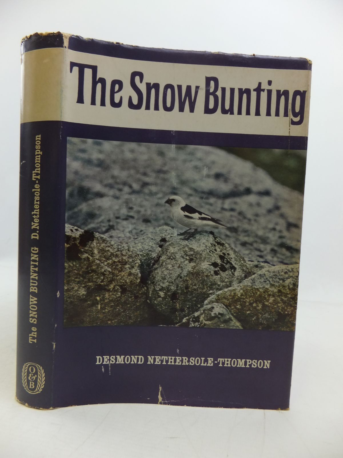Photo of THE SNOW BUNTING- Stock Number: 1808191