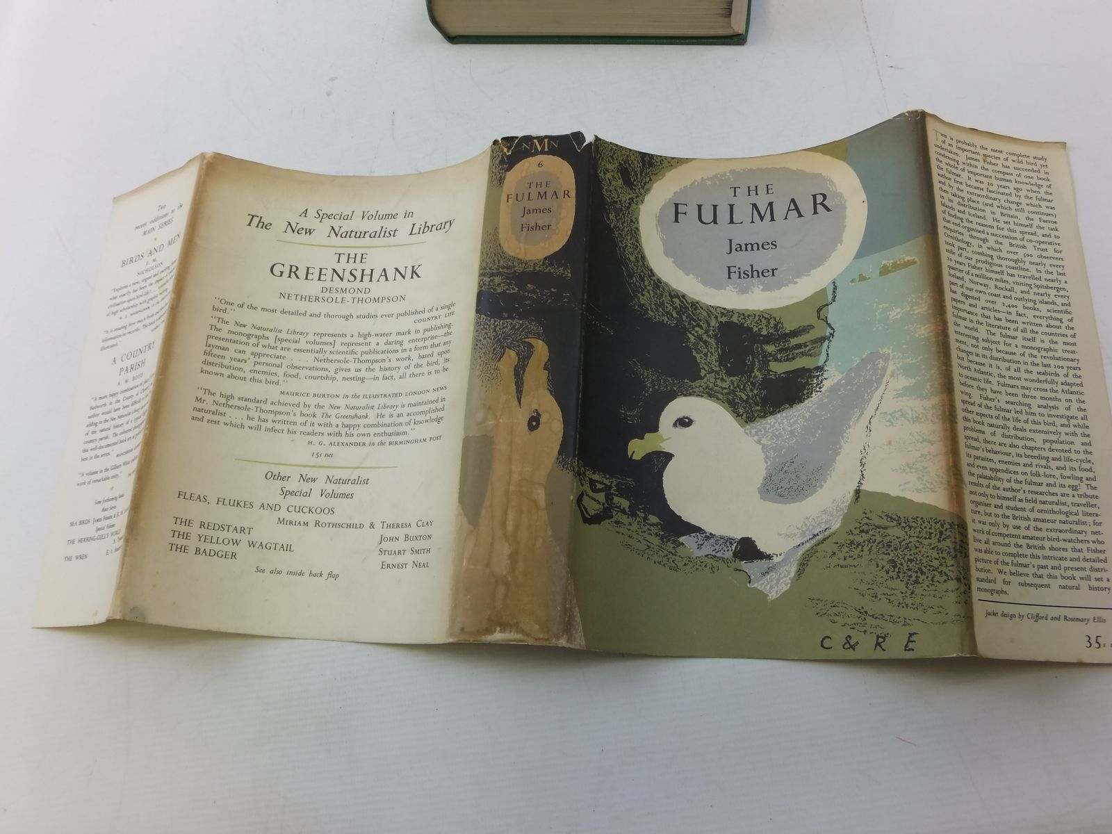Photo of THE FULMAR (NMN 6) written by Fisher, James illustrated by Scott, Peter published by Collins (STOCK CODE: 1808719)  for sale by Stella & Rose's Books