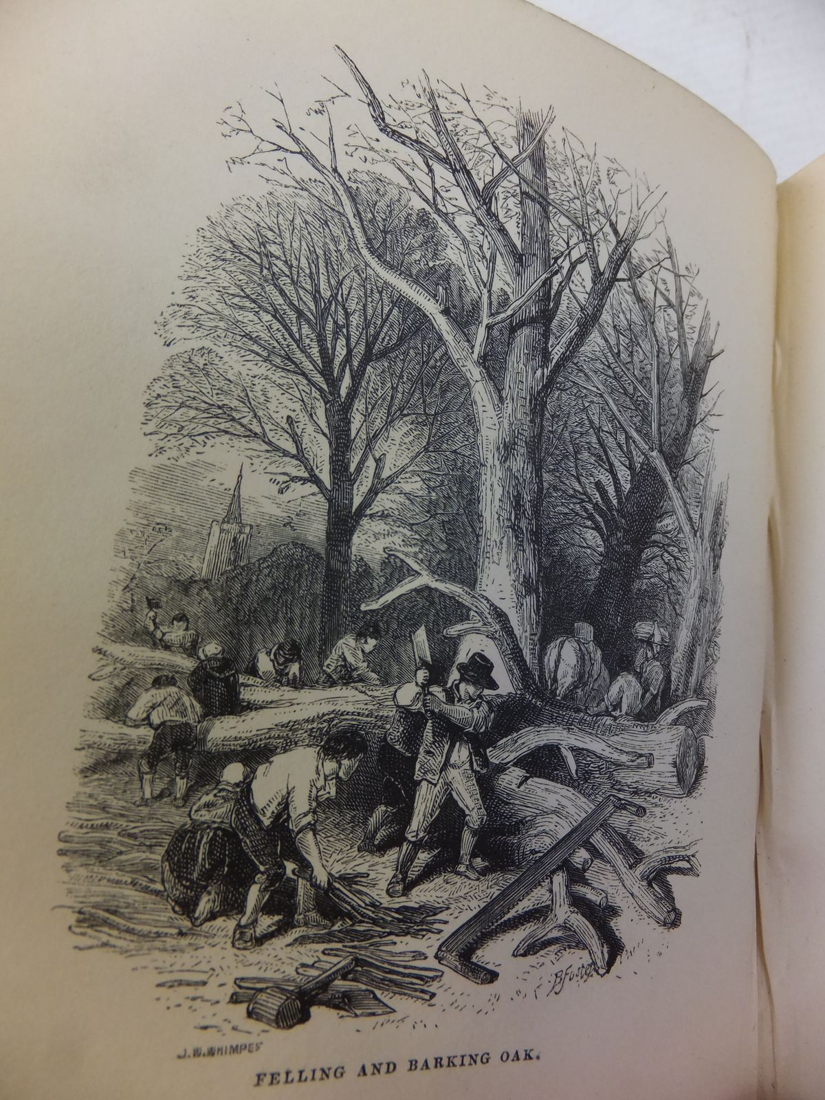Photo of A RAMBLE IN WINTER SPRING SUMMER AND AUTUMN written by Johns, Rev C.A. published by Society for Promoting Christian Knowledge (STOCK CODE: 1809121)  for sale by Stella & Rose's Books