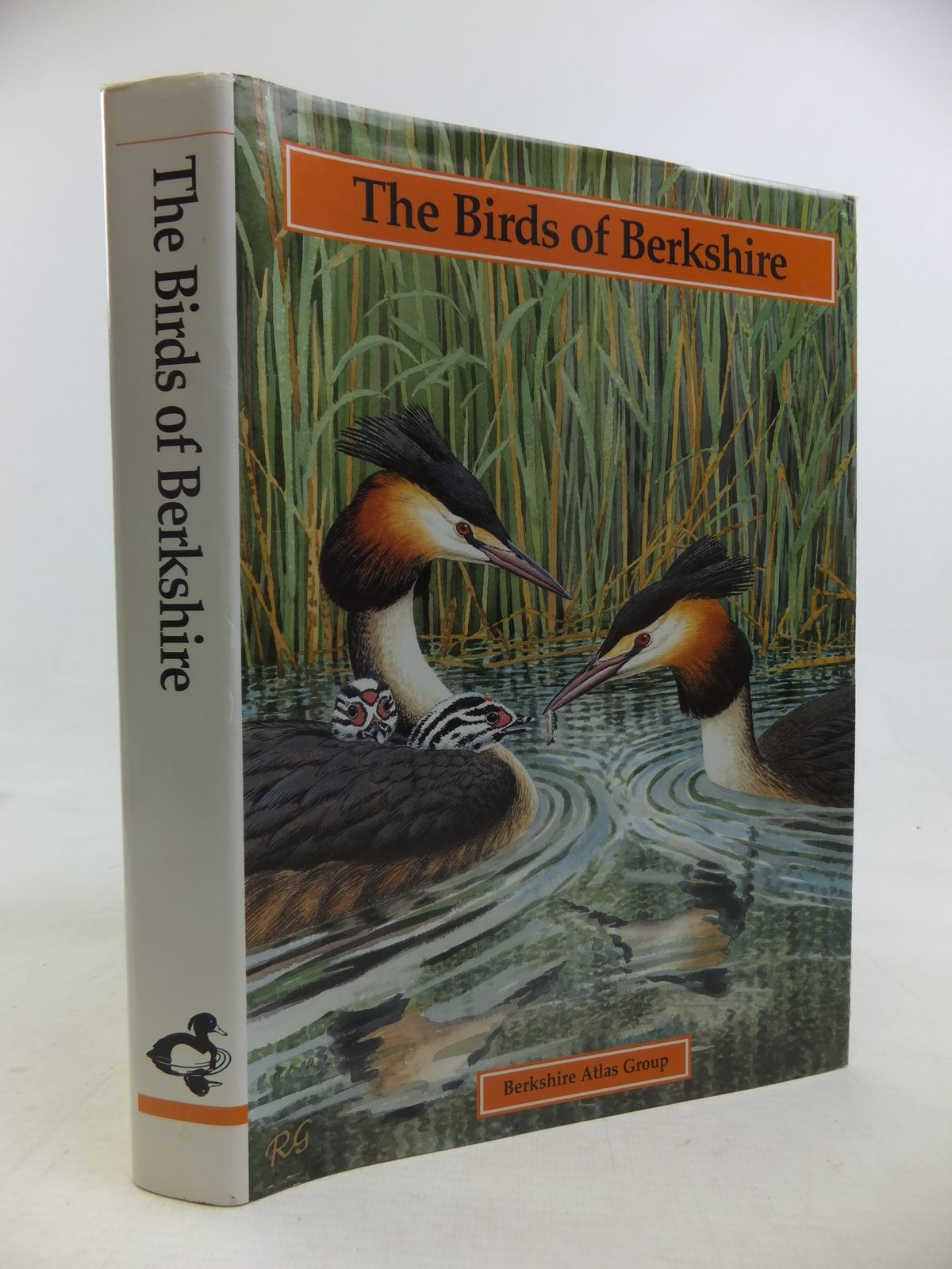 Photo of THE BIRDS OF BERKSHIRE written by Standley, Peter Bucknell, N.J. Swash, Andy Collins, Ian D. illustrated by Gillmor, Robert published by The Berkshire Atlas Group (STOCK CODE: 1810932)  for sale by Stella & Rose's Books
