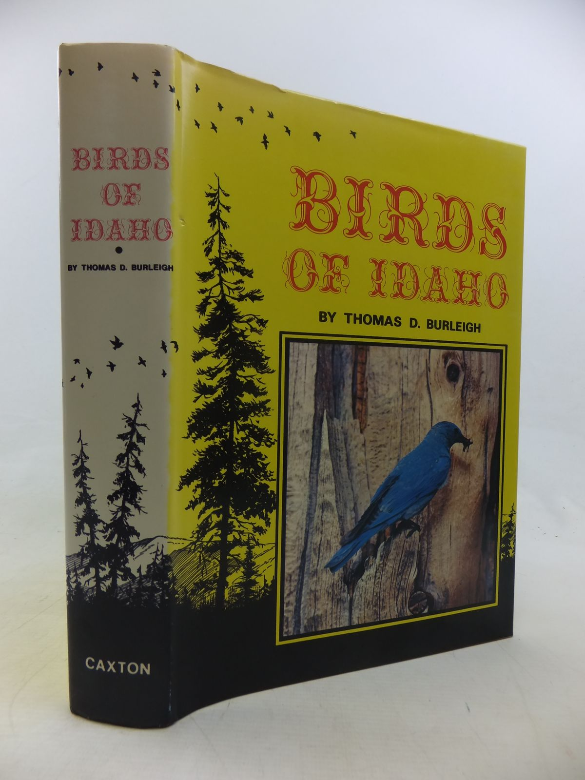 Photo of BIRDS OF IDAHO- Stock Number: 1811170