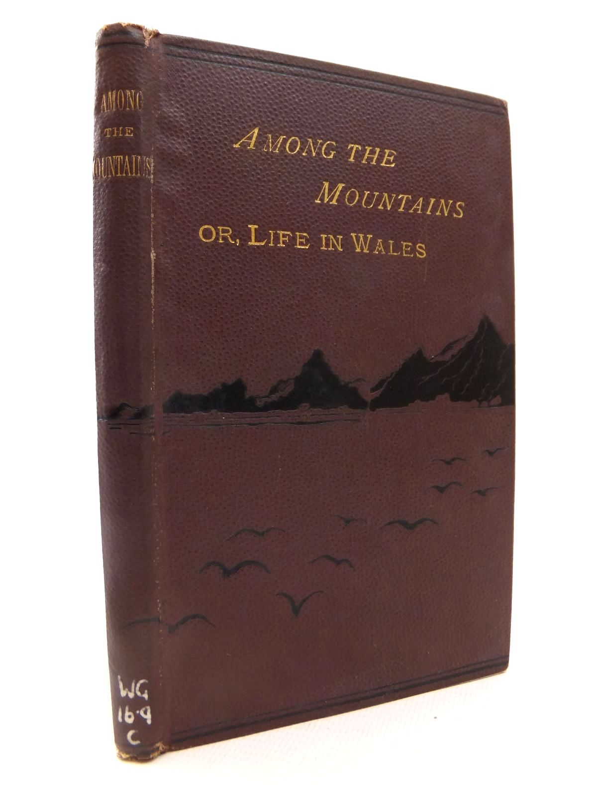 Photo of AMONG THE MOUNTAINS; OR, LIFE IN WALES- Stock Number: 1812843