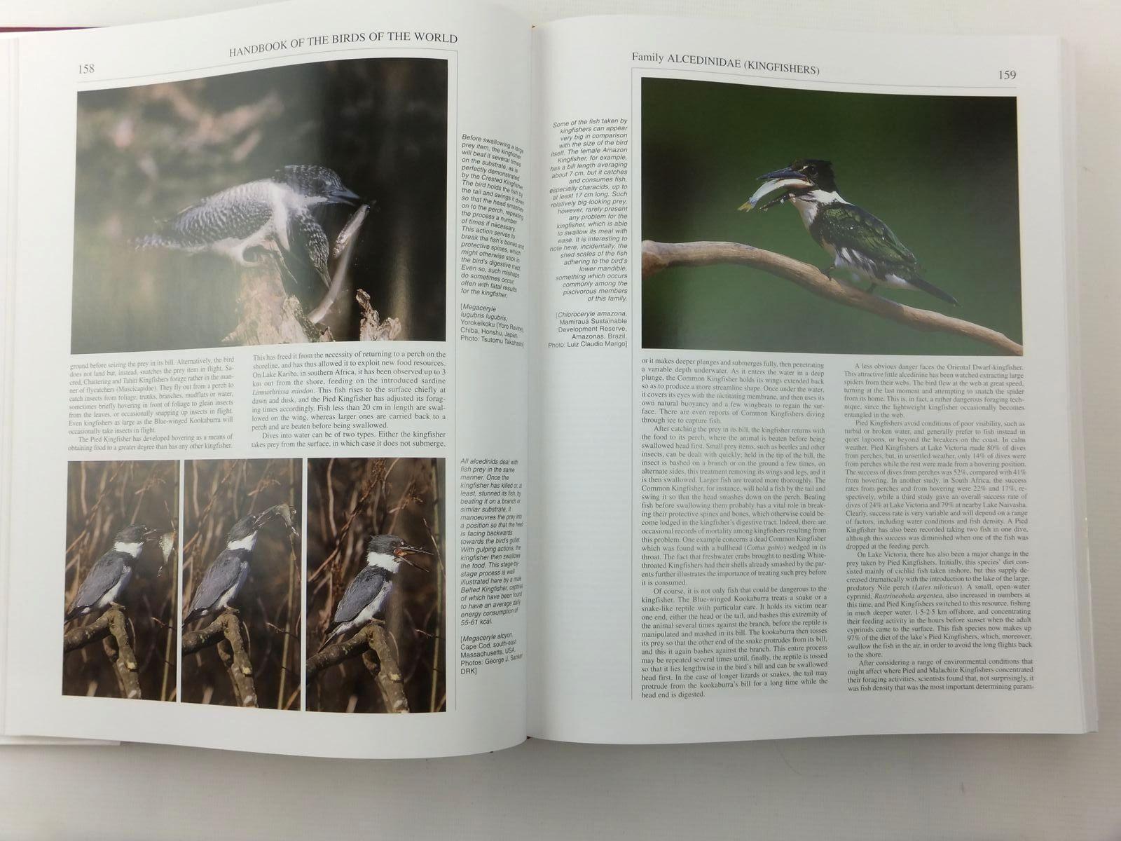 Photo of HANDBOOK OF THE BIRDS OF THE WORLD VOLUME 6: MOUSEBIRDS TO HORNBILLS written by Del Hoyo, Josep<br />Elliott, Andrew<br />Sargatal, Jordi<br />et al, illustrated by Arlott, Norman<br />Burn, Hilary<br />Jutglar, Francesc<br />et al., published by Lynx Edicions (STOCK CODE: 1814429)  for sale by Stella & Rose's Books