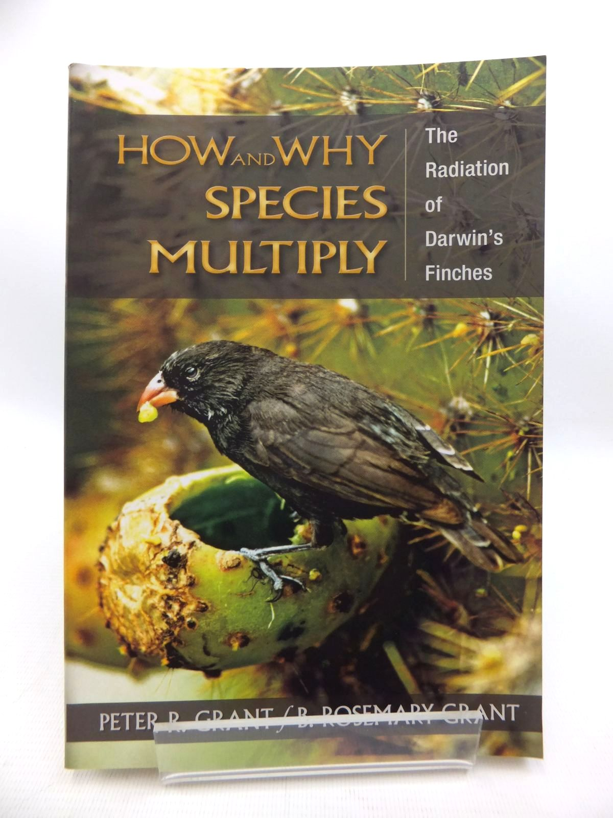 Photo of HOW AND WHY SPECIES MULTIPLY: THE RADIATION OF DARWIN'S FINCHES written by Grant, Peter R. Grant, B. Rosemary published by Princeton University Press (STOCK CODE: 1815192)  for sale by Stella & Rose's Books
