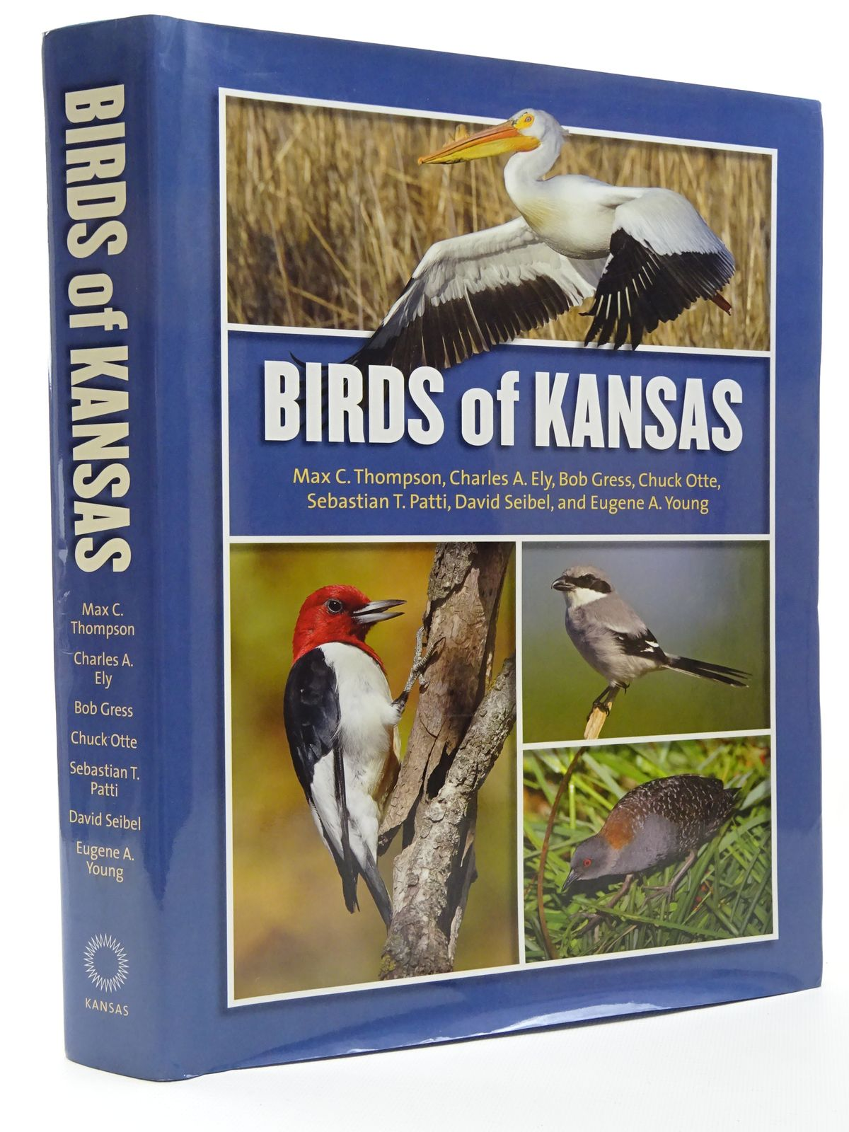 Photo of BIRDS OF KANSAS written by Thompson, Max C.<br />Ely, Charles A.<br />et al, published by University Press Of Kansas (STOCK CODE: 1815603)  for sale by Stella & Rose's Books