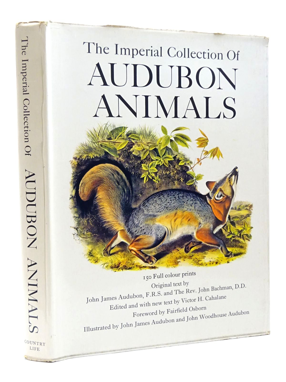 Photo of THE IMPERIAL COLLECTION OF AUDUBON ANIMALS written by Audubon, John James illustrated by Audubon, John James published by Country Life Books (STOCK CODE: 1815634)  for sale by Stella & Rose's Books