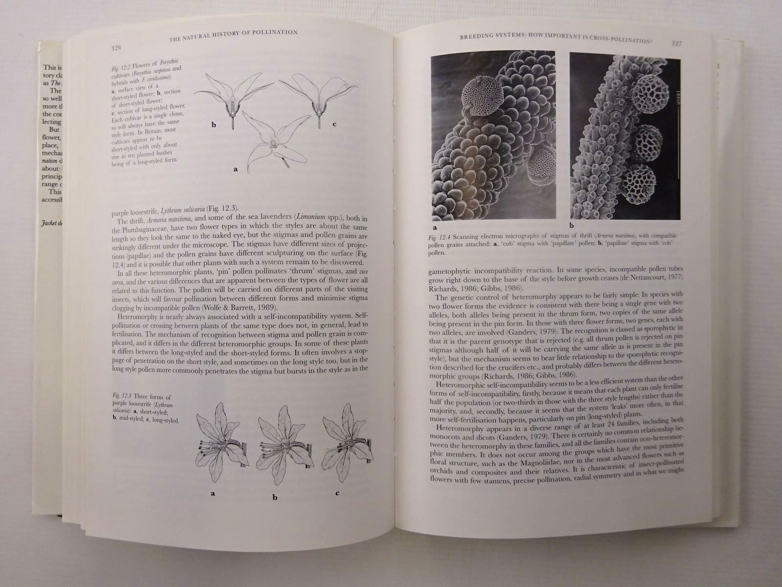 Photo of THE NATURAL HISTORY OF POLLINATION (NN 83) written by Proctor, Michael Yeo, Peter Lack, Andrew published by Harper Collins (STOCK CODE: 1816265)  for sale by Stella & Rose's Books