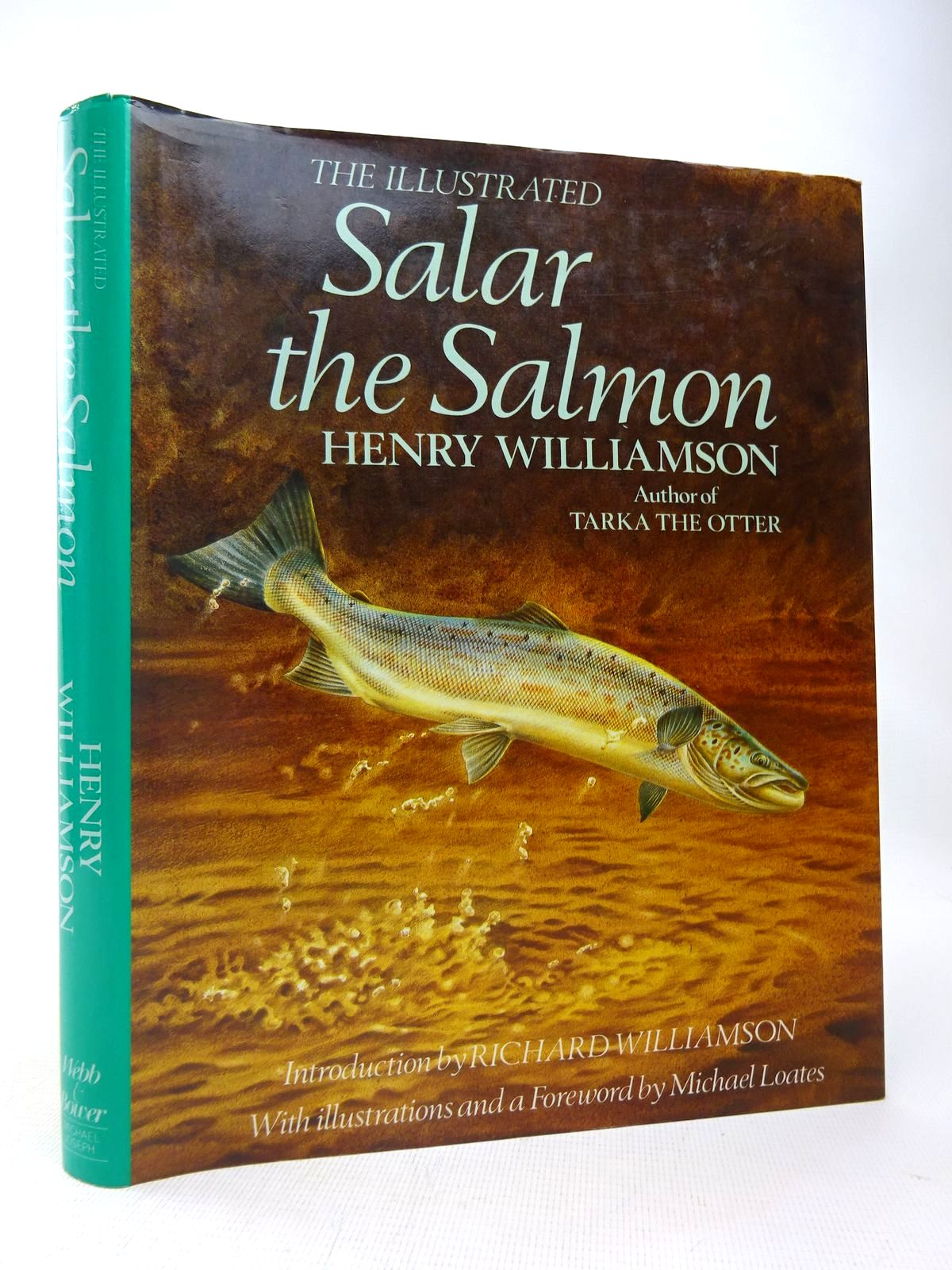 Photo of THE ILLUSTRATED SALAR THE SALMON written by Williamson, Henry illustrated by Loates, Michael published by Webb & Bower (STOCK CODE: 1816593)  for sale by Stella & Rose's Books