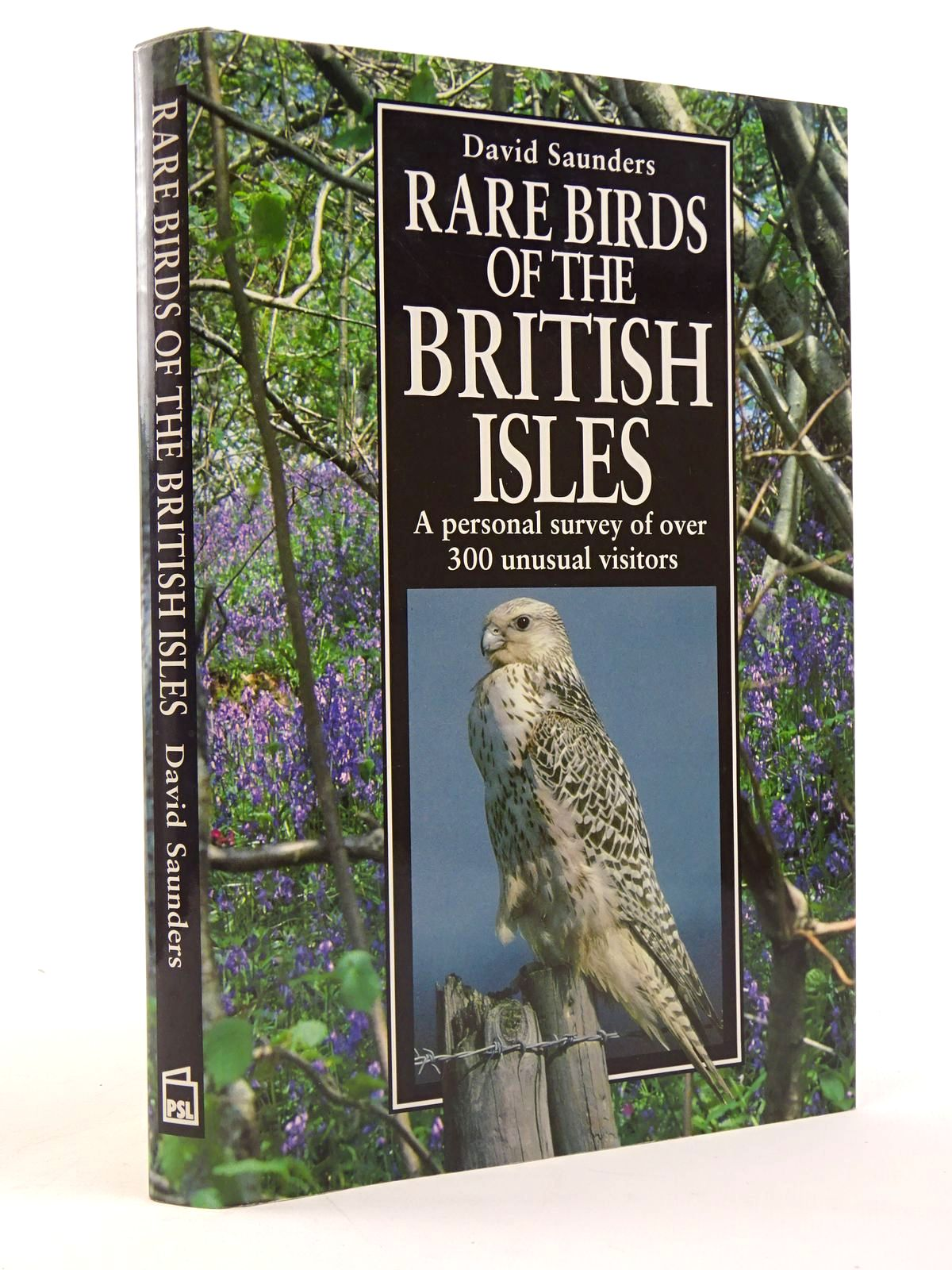 Photo of RARE BIRDS OF THE BRITISH ISLES- Stock Number: 1817454