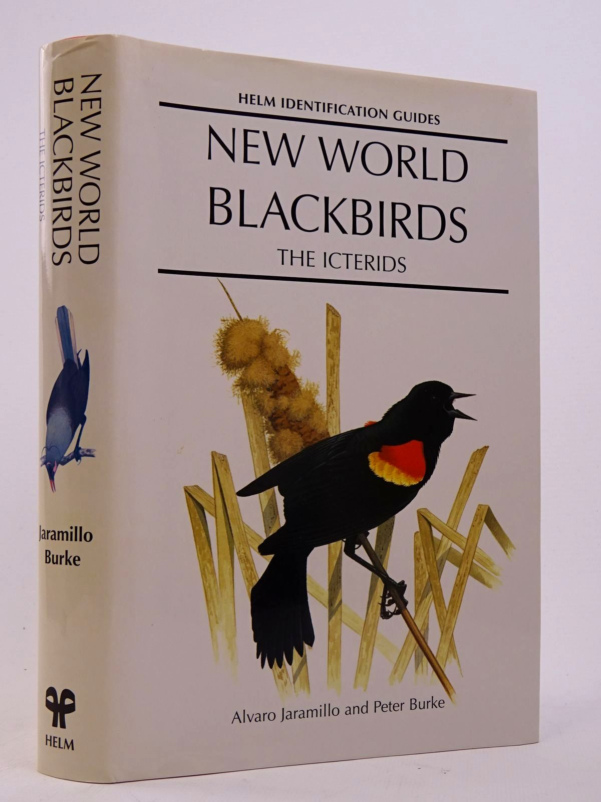 Photo of NEW WORLD BLACKBIRDS: THE ICTERIDS (HELM IDENTIFICATION GUIDES) written by Jaramillo, Alvaro<br />Burke, Peter published by Christopher Helm (STOCK CODE: 1817570)  for sale by Stella & Rose's Books
