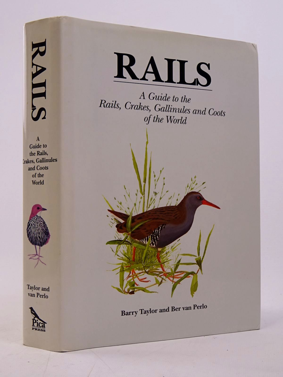 Photo of RAILS written by Taylor, Barry illustrated by Van Perlo, Ber published by Pica Press (STOCK CODE: 1817575)  for sale by Stella & Rose's Books