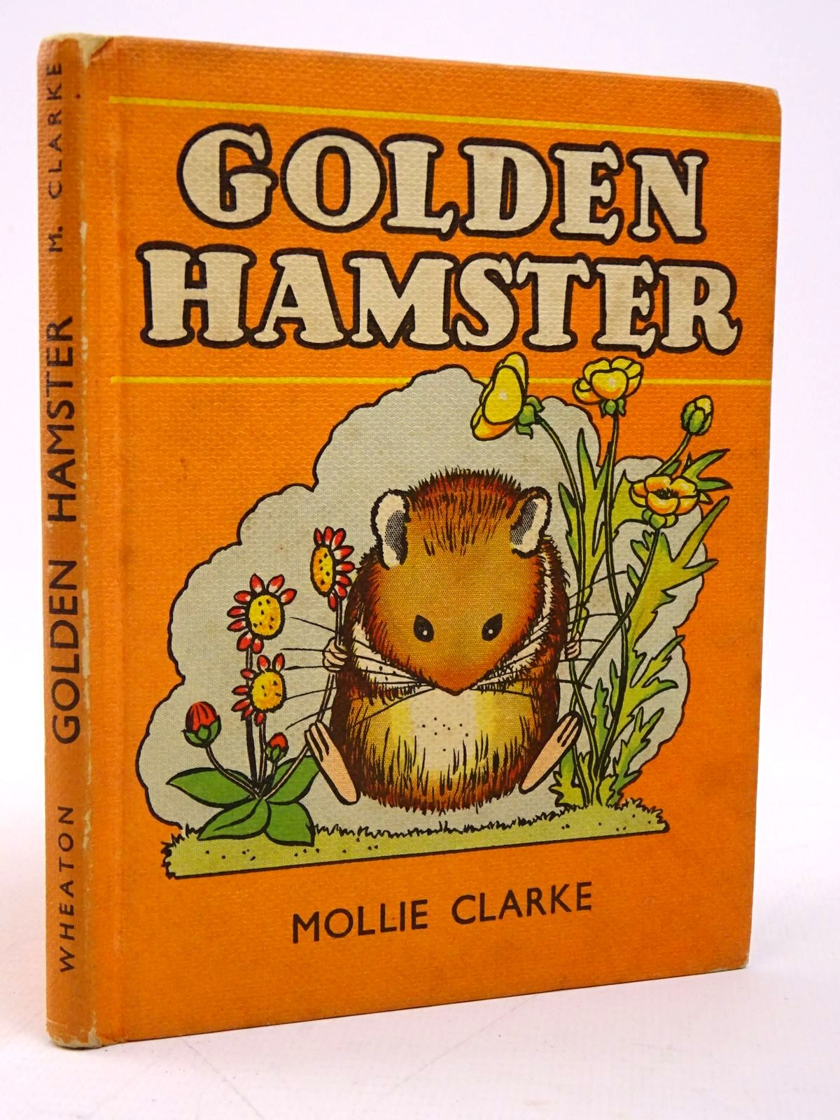 Photo of GOLDEN HAMSTER written by Clarke, Mollie illustrated by Clarke, Mollie published by A. Wheaton & Co. (STOCK CODE: 1817767)  for sale by Stella & Rose's Books