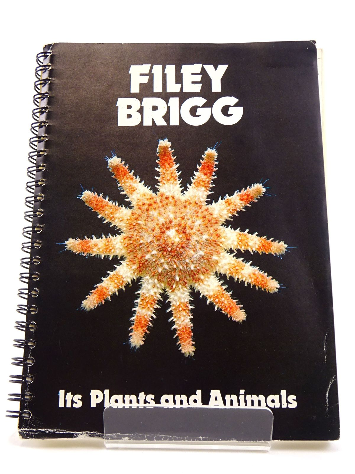 Photo of FILEY BRIGG: ITS PLANTS AND ANIMALS written by Croft, D.<br />Donachie, S.P.<br />Lowsley, D.<br />et al, published by University Of Hull (STOCK CODE: 1818172)  for sale by Stella & Rose's Books